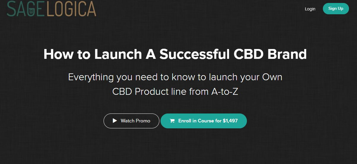 how-to-launch-a-successful-cbd-brand