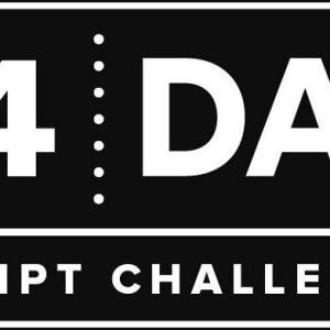 14-day-video-script-challenge