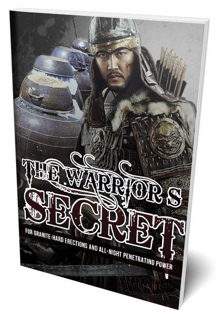 The-Warrior-s-Secret